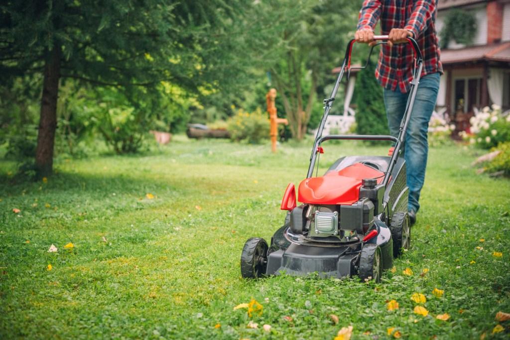 avoir une belle pelouse bien tondue